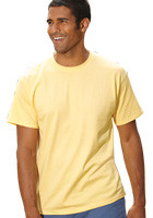 Wholesale Hanes 6.1oz Tagless Tees