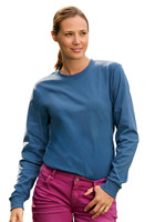 Bulk Hanes Tagless Unisex 6.1 oz  Long Sleeve T-Shirts