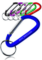 Promotional Metal Carabiner Key Chain