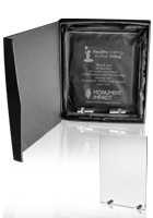 Custom Small Chroma Glass Awards with Double Stand