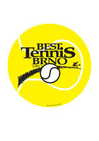 Promotional Tennis Ball 5.75in x 5.75in Magnets